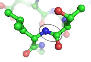Peptide mit Mehrfachwirkung